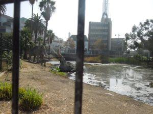洛杉磯城中心的瀝青坑